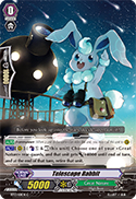 Telescope Rabbit
