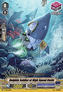 Dolphin Soldier of High Speed Raids